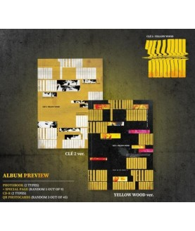 Stray Kids - Special Album [Clé 2 : Yellow Wood]